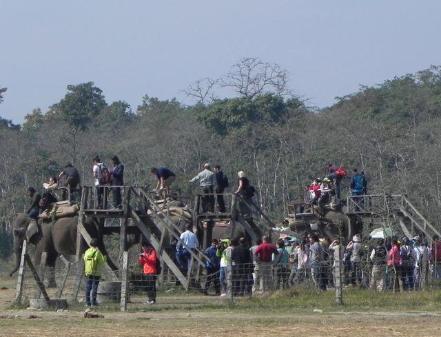 boarding safari rides