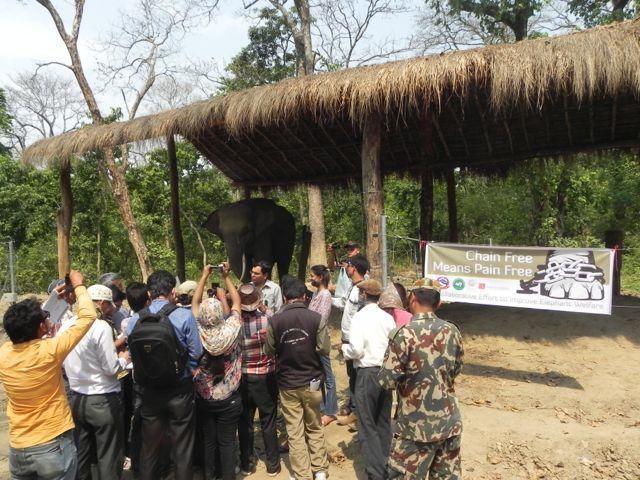 Nepal chain free done Apr 2015