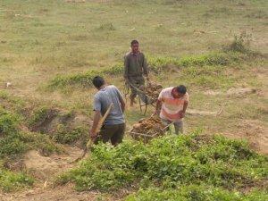3 mahouts 2 wheelbarrows