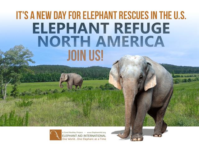elephant rescue at Elephant Refuge North America
