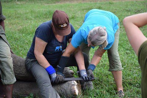 Sarah B & Carol trimming feet