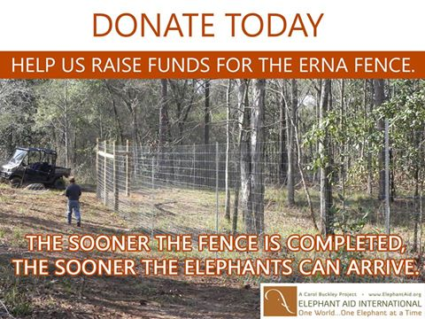 Weekly Update: Fencing Funds Still Needed