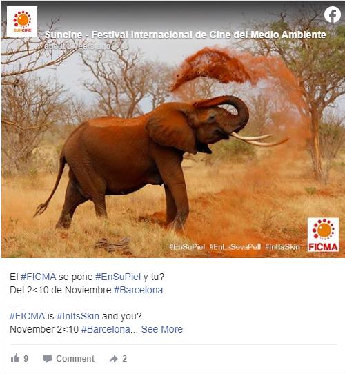 FICMA elephant