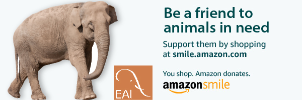 support EAI when you shop Amazon