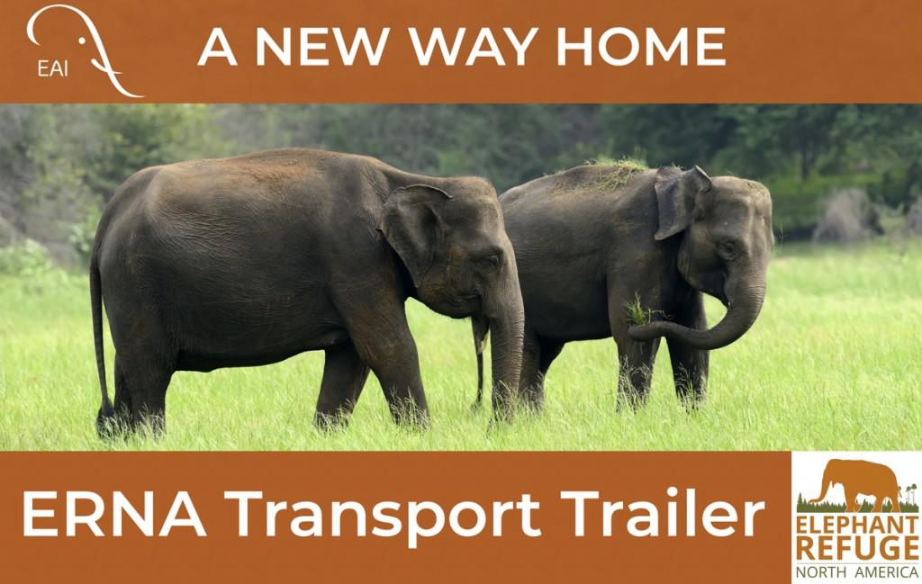 elephant transport trailer