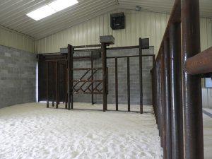elephant barn stalls