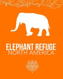 elephant refuge north america prayer flag