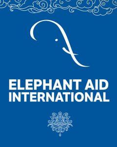 elephant aid international prayer flag
