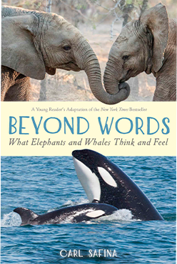 Beyond Words: What Elephants and Whales Think book cover