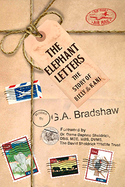 The Elephant Letters book cover